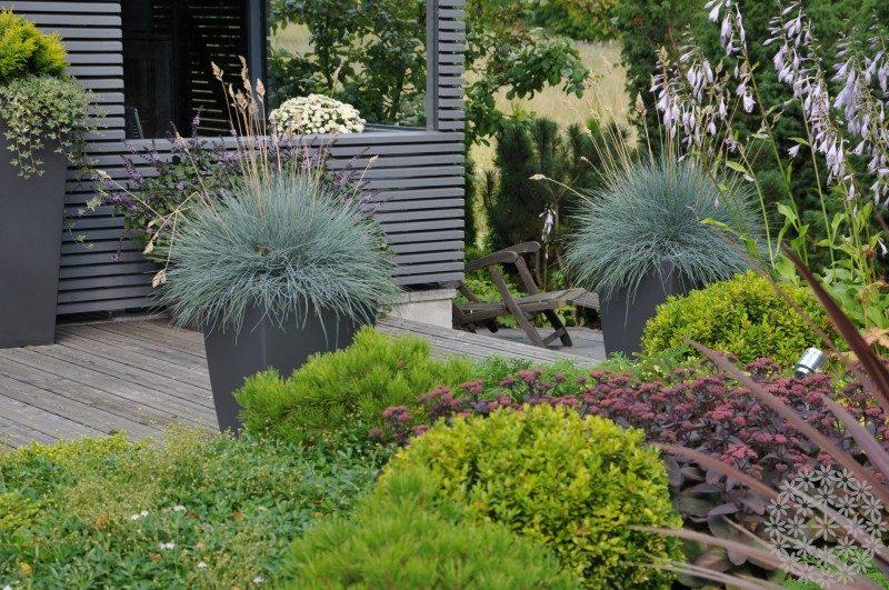 Toiveiden mukaiset puutarhat