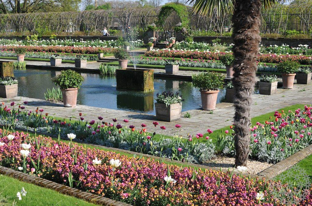 Upotettu puutarha kuninkaallisessa juhlahumussa