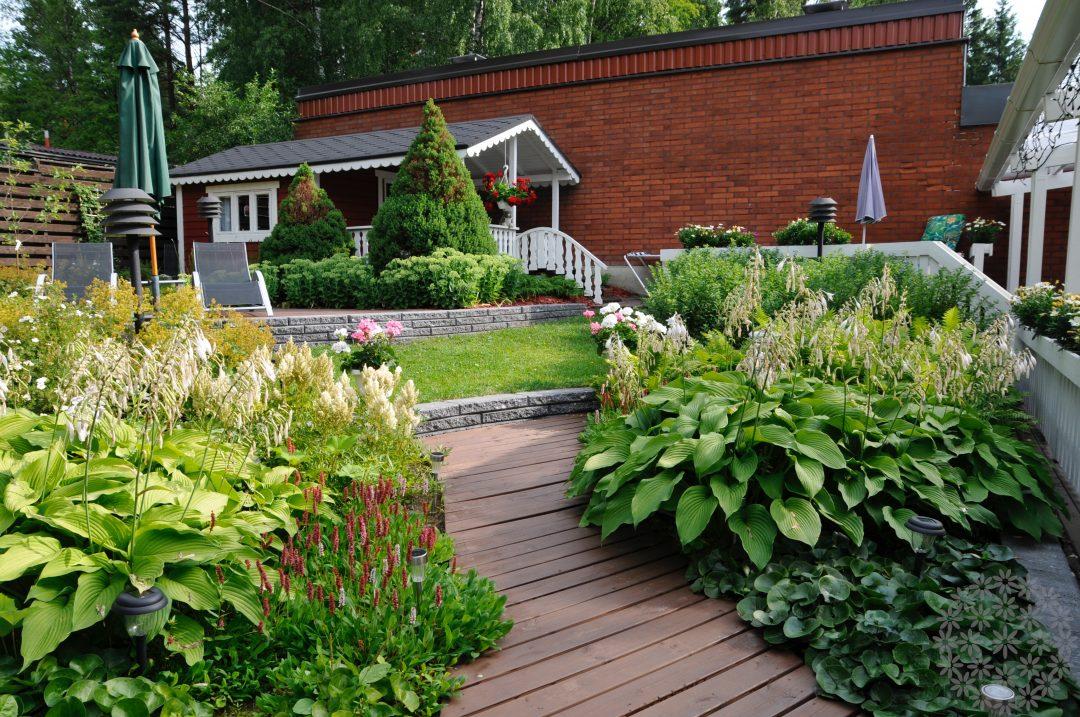 Suojainen puutarha takapihalla